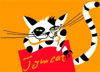[B@H] tomcat